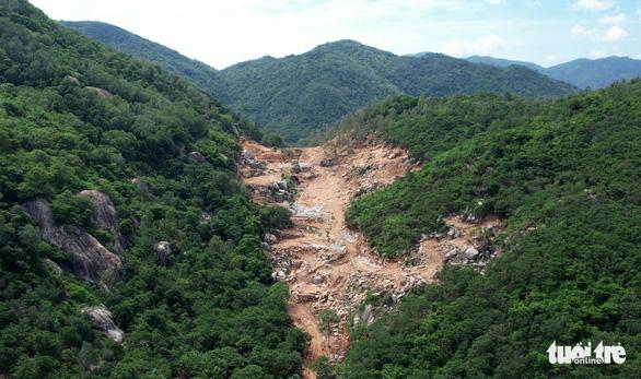 Bắt tạm giam người chủ mưu phá rừng trên núi Thị Vải - Ảnh 2.