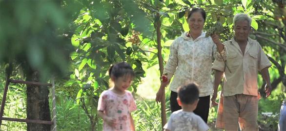 Nhãn Hưng Yên và một mùa thu hoạch thật khác - Ảnh 6.