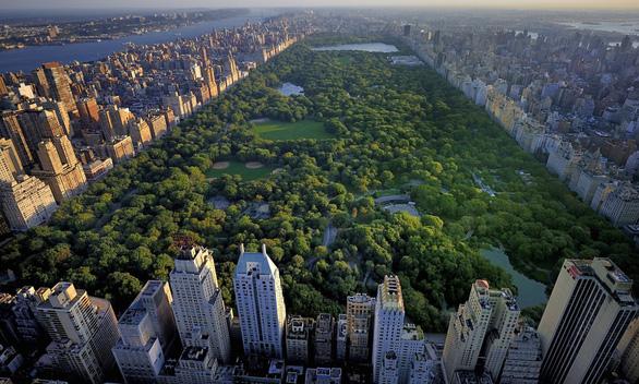 Tận hưởng cuộc sống tại căn hộ có view ôm trọn công viên 47.000m2 - Ảnh 1.