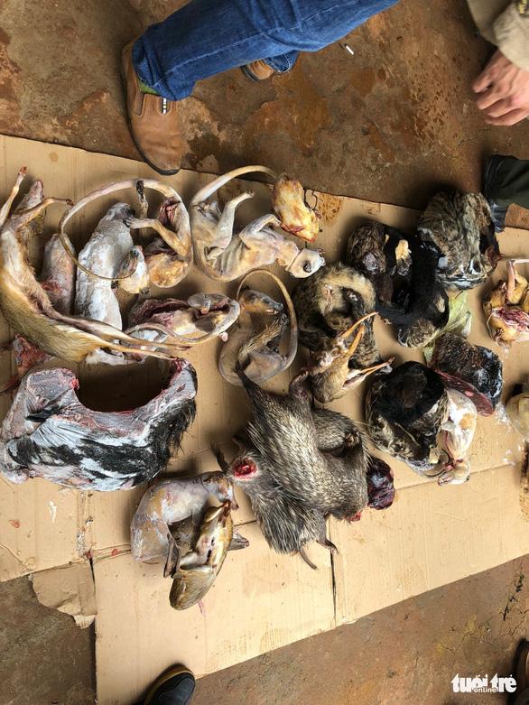 Bắt lâm tặc chất kín xác thú rừng trong 3 tủ cấp đông - Ảnh 2.