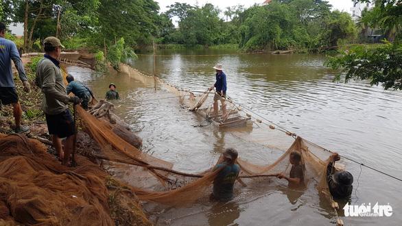 Một hộ dân bán rẻ cả hầm cá tra hơn 3 tấn cho gian hàng 0 đồng' ở Châu Đốc - Ảnh 1.