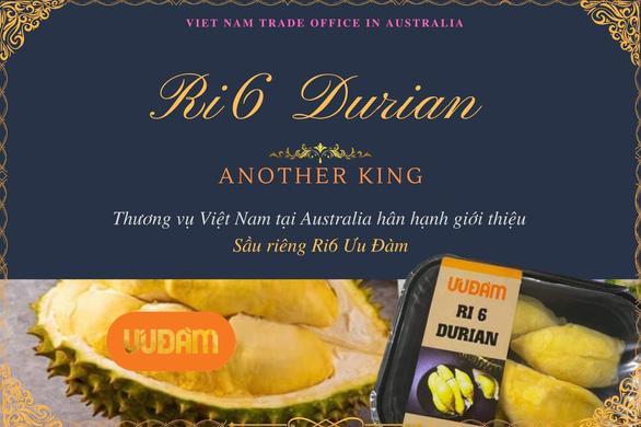 Sầu riêng Ri6 của Việt Nam chiếm lĩnh thị trường Úc - Ảnh 1.