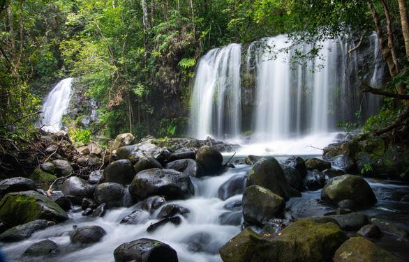 Núi Chúa và Kon Hà Nừng chính thức trở thành Khu dự trữ sinh quyển thế giới - Ảnh 2.