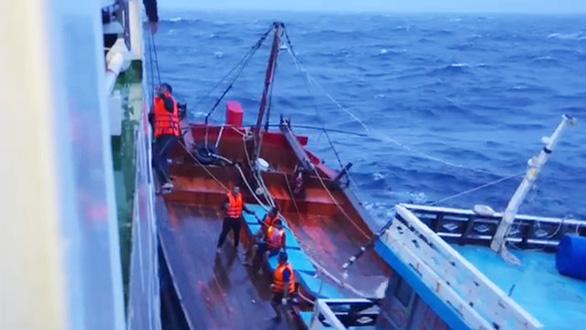 Vượt sóng dữ cứu ngư dân - Ảnh 5.