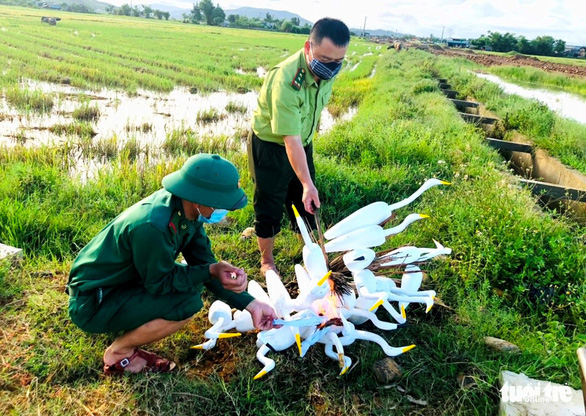 Ngăn chặn nạn săn bắt, trả lại bình yên cho đàn chim trời mùa di cư - Ảnh 2.