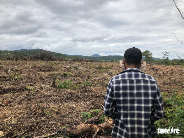 San ủi cây rừng tái sinh để... trồng keo lai - Ảnh 5.
