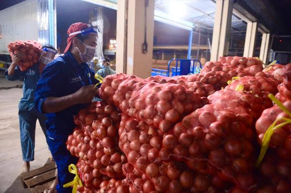 Hành tây Lào Cai, bắp cải Đà Lạt... nhộn nhịp đổ về điểm tập kết tại chợ đầu mối Hóc Môn - Ảnh 1.