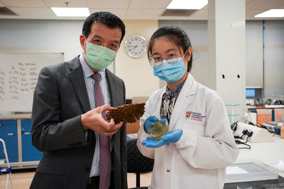 Singapore biến vỏ sầu riêng thành băng keo cá nhân kháng khuẩn - Ảnh 1.