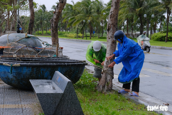 Ngư dân Đà Nẵng mang tàu thuyền lên đường, néo vô cây... đề phòng bão số 6 - Ảnh 4.