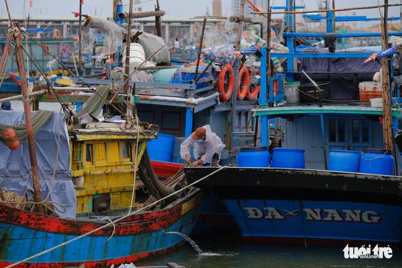 Ngư dân Đà Nẵng mang tàu thuyền lên đường, néo vô cây... đề phòng bão số 6 - Ảnh 1.