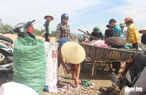 Cả trăm người đi vớt 'lộc biển' dạt vào bờ sau mưa bão - Ảnh 4.