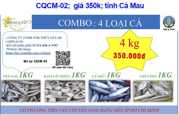 Thí điểm xe combo hàng từ Cà Mau, Tiền Giang đến Bình Thạnh, TP.HCM - Ảnh 1.