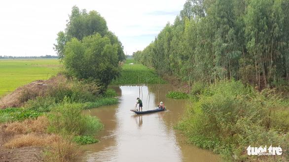 Nước phù sa cuồn cuộn trên kênh Vĩnh Tế nhưng lũ dự báo về trễ hơn 1 tháng - Ảnh 2.