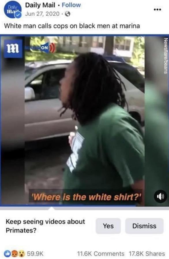 Facebook xin lỗi vì dán nhãn video người da màu là động vật linh trưởng - Ảnh 1.