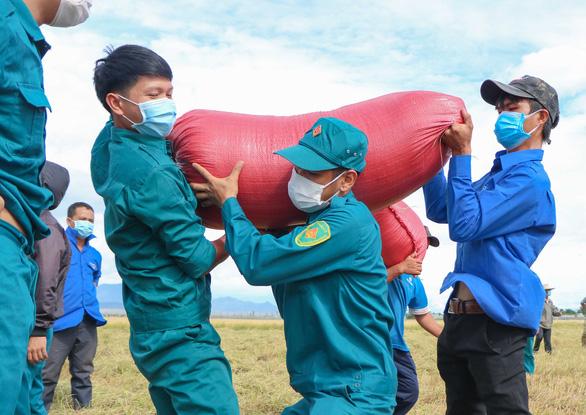 Dân quân tự vệ giúp dân gặt lúa - Ảnh 4.
