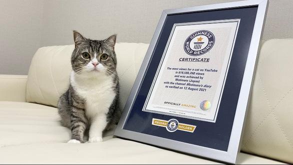 Chú mèo Motimaru ở Nhật lập kỷ lục Guinness được xem nhiều nhất trên YouTube - Ảnh 1.