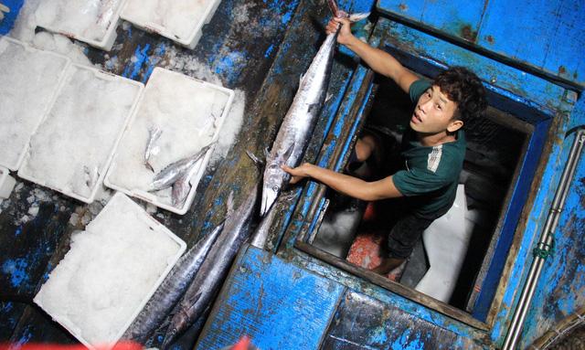Bị thẻ vàng, doanh nghiệp hải sản tìm cách tự cứu mình - Ảnh 1.
