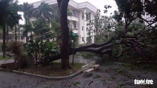 Tâm bão số 12 đổ bộ đất liền, gió cấp 11 tại Nha Trang, TP Tuy Hòa mất điện - Ảnh 9.