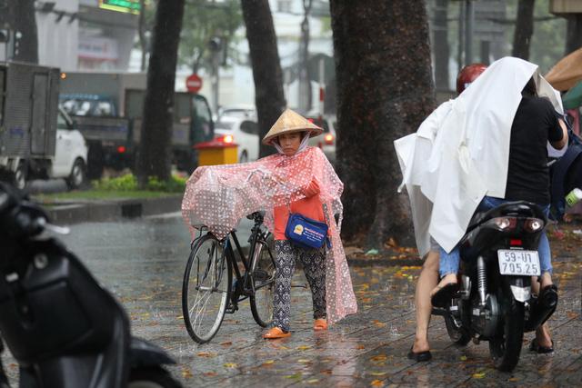 Sài Gòn mưa cả ngày lẫn đêm, chuẩn bị đón triều cường - Ảnh 4.