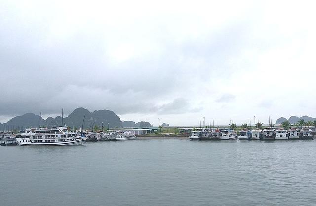 Chìm tàu du lịch trong bến cảng Tuần Châu - Ảnh 1.