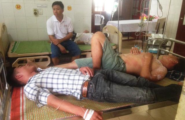 Ong rừng tấn công, 10 người nhập viện - Ảnh 1.