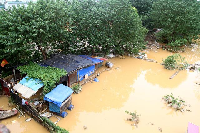Nước lũ nhấn chìm nhà cửa, vườn tược vùng bãi sông Hồng - Ảnh 1.