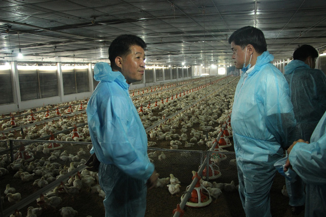 Miền Đông tìm cách ứng dụng công nghệ 4.0 trong chăn nuôi - Ảnh 1.