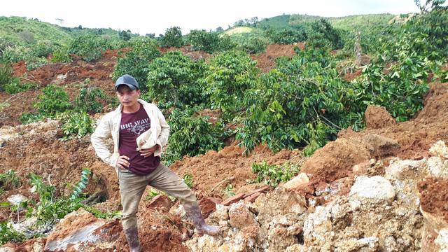 Sụt lở đất nghiêm trọng, chôn vùi 10ha cà phê ở Lâm Đồng - Ảnh 1.