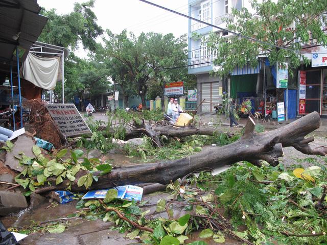 Bão mạnh khủng khiếp: Khánh Hòa, Phú Yên hàng ngàn nhà bay nóc, nhiều người mất tích - Ảnh 3.