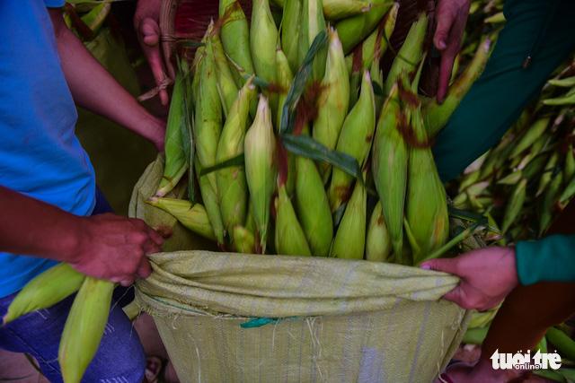 Tấp nập kẻ mua người bán tại chợ bắp lớn nhất Sài Gòn - Ảnh 14.