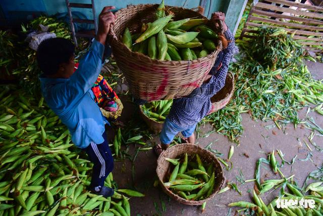 Tấp nập kẻ mua người bán tại chợ bắp lớn nhất Sài Gòn - Ảnh 2.