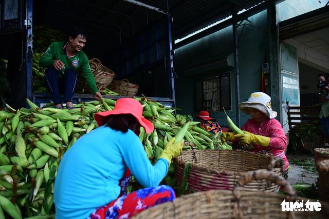 Tấp nập kẻ mua người bán tại chợ bắp lớn nhất Sài Gòn - Ảnh 5.