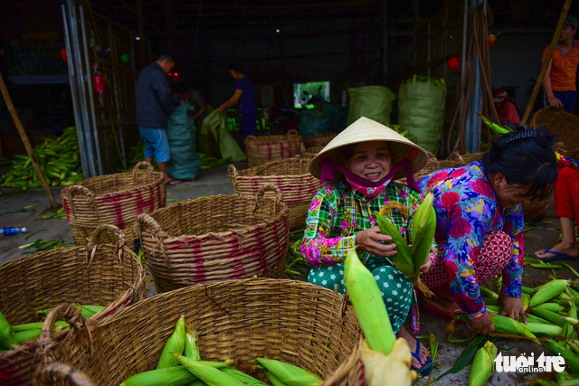 Tấp nập kẻ mua người bán tại chợ bắp lớn nhất Sài Gòn - Ảnh 7.