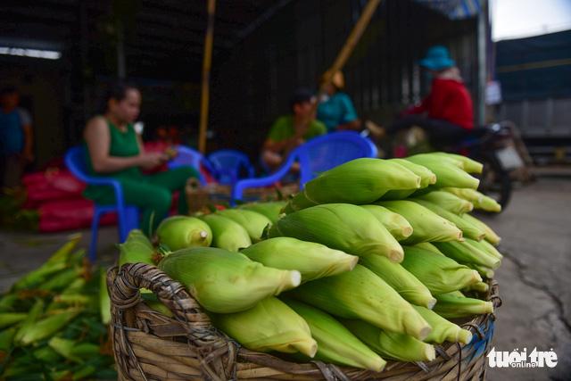Tấp nập kẻ mua người bán tại chợ bắp lớn nhất Sài Gòn - Ảnh 8.
