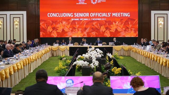 Tuần lễ cấp cao APEC chính thức khai mạc tại Đà Nẵng - Ảnh 3.