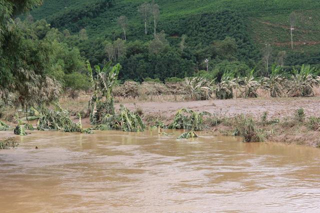 Tuổi Trẻ đưa hàng cứu trợ đến vùng lũ Bình Sơn - Quảng Ngãi - Ảnh 2.