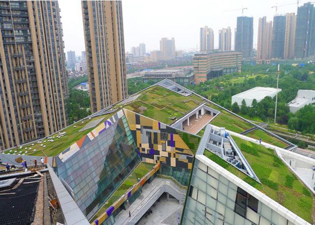 Trung Quốc xây dựng 30 'thành phố bọt biển' chống lũ - Ảnh 2.