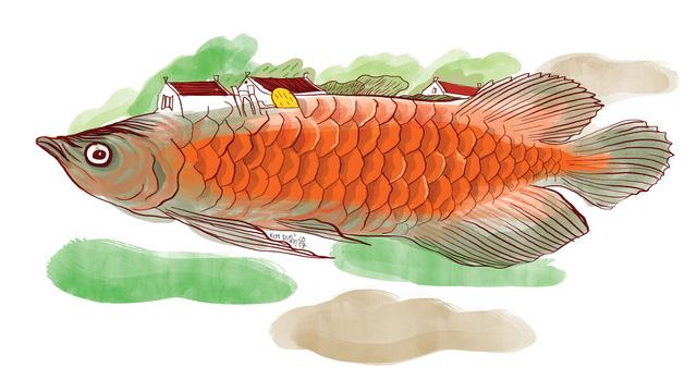 Truyện ngắn 1.200 chữ: Chuyện con cá Rồng - ảnh 1