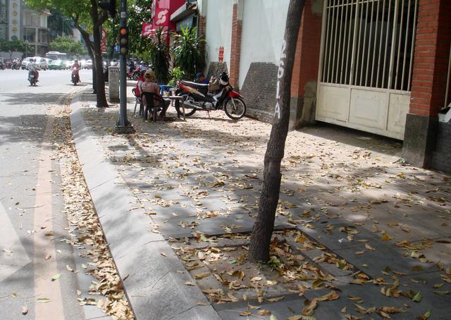 Người Sài Gòn sau đêm mưa lớn - Ảnh 1.