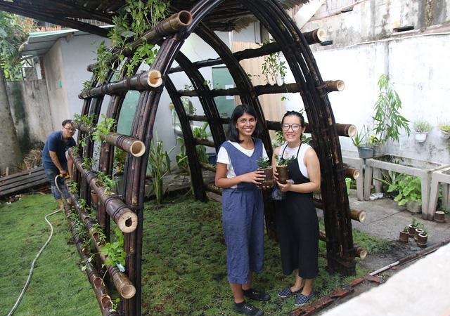 Nhà rau bằng tre và cỏ tranh giữa Sài Gòn của cô gái Ấn - Ảnh 1.