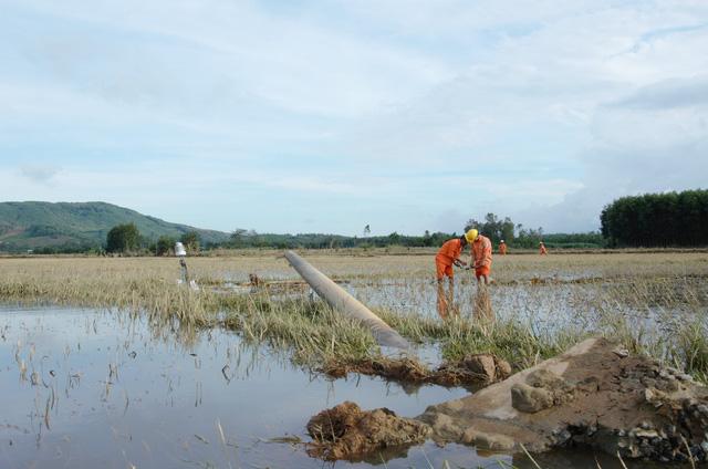 Điện lực Quảng Ngãi vừa sửa điện, vừa cứu trợ dân vùng lũ - Ảnh 3.