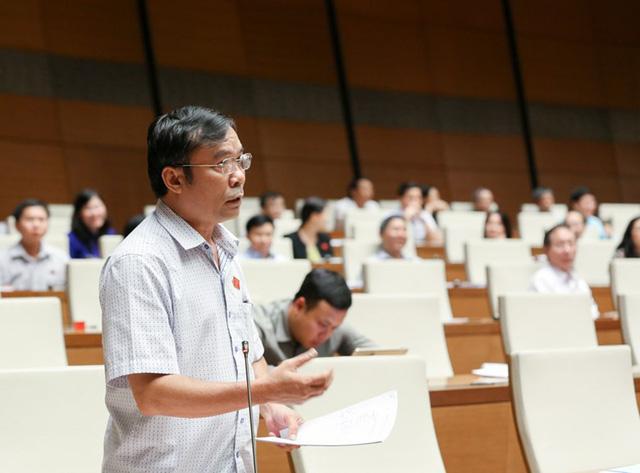 Đại biểu tranh luận kịch liệt vụ nghi phân bón giả Thuận Phong - Ảnh 2.