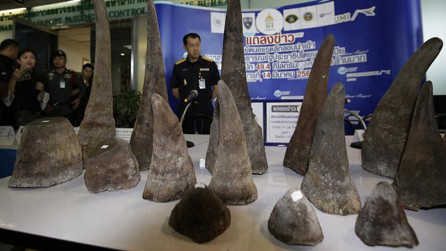 Mang 7,4kg sừng tê, 3 người Việt bị bắt ở sân bay Thái - Ảnh 1.