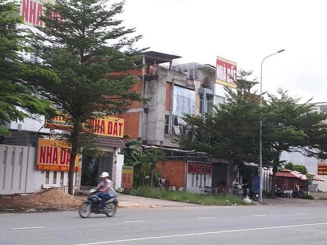 Thời điểm đầu tư bất động sản tại xã Long Hoà, Cần Giờ - Ảnh 1.