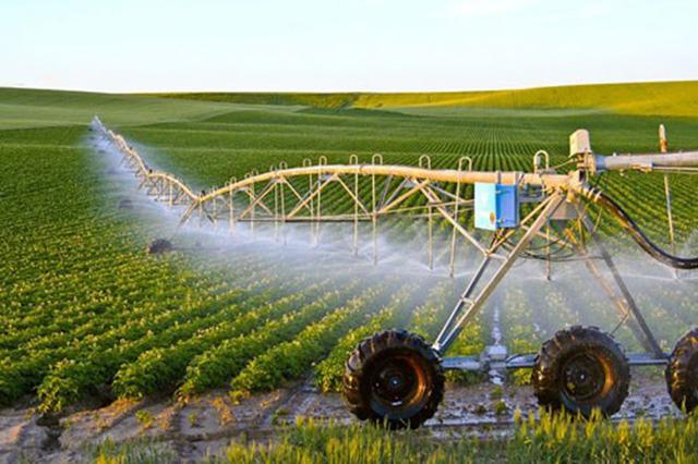 Đào tạo nguồn nhân lực nông nghiệp công nghệ cao - Ảnh 1.