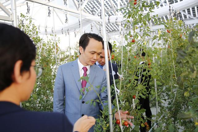 FLC bắt tay làm nông nghiệp cùng Farmdo - Ảnh 1.