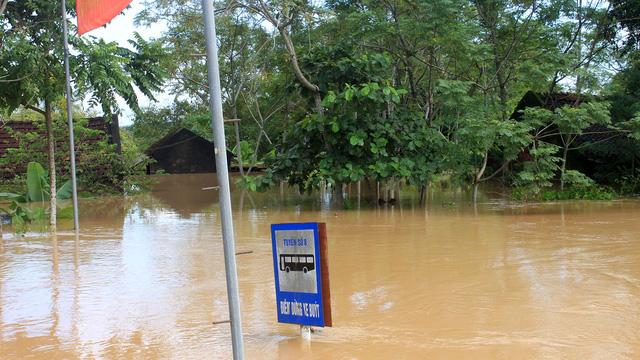 Thanh Hóa: hàng nghìn nhà dân ngập nước, huyện cứu trợ khẩn cấp - Ảnh 8.