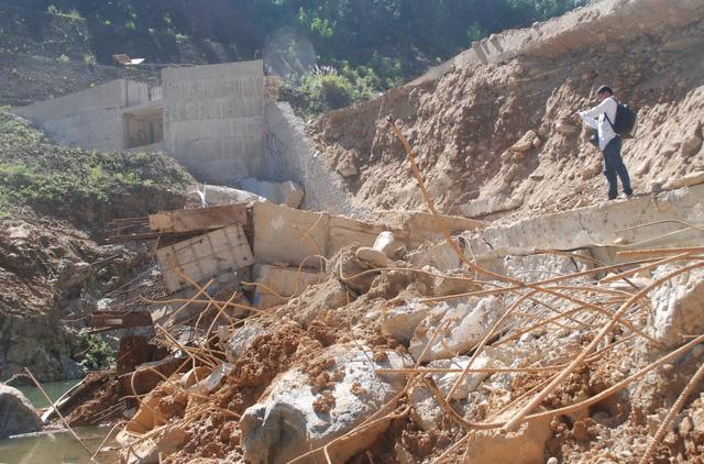 Thủy điện nhỏ được ca ngợi vì... phát triển rừng - Ảnh 2.