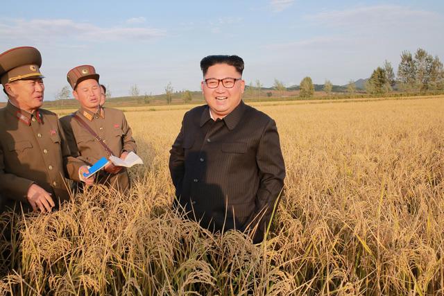 Ông Trump nói 'Đừng phí công đối thoại với Triều Tiên' - Ảnh 1.