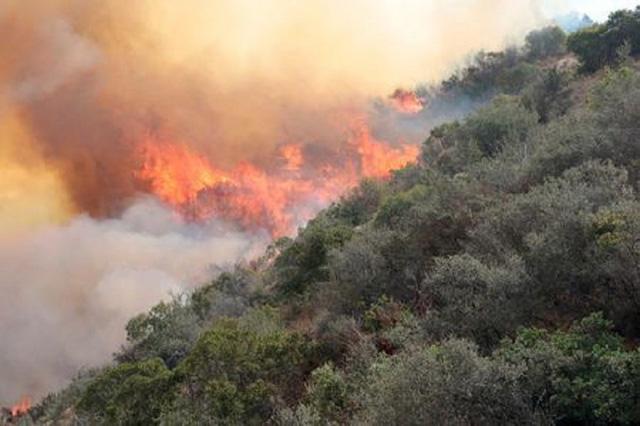 Los Angeles đối phó với trận cháy rừng lịch sử - Ảnh 1.